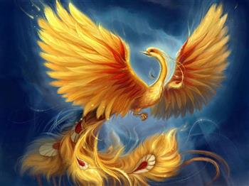 Phoenix Not Failure